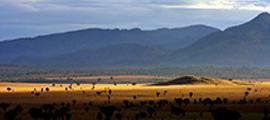 4-days-kidepo-uganda-safari