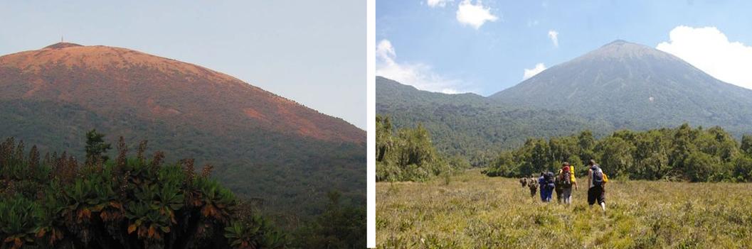 5-days-karisimbi-hike-gorilla-trekking-tour-rwanda