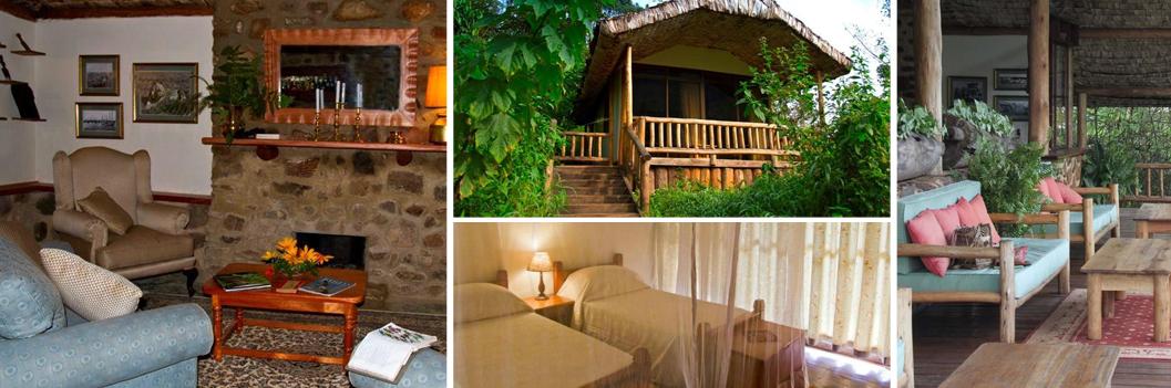 engagi-lodge-accommodation-in-bwindi-np-uganda