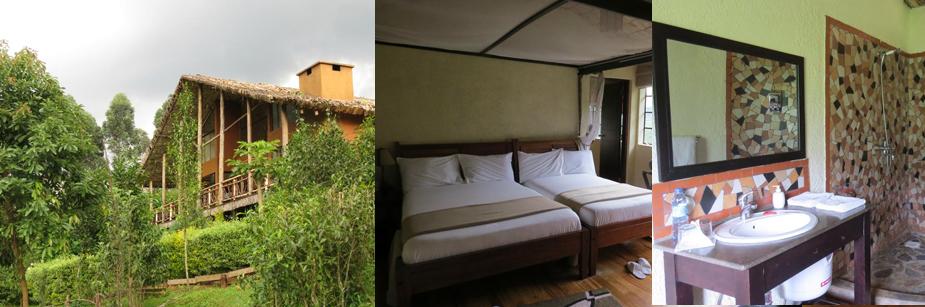 mahogany-springs-camp-accommodation-in-bwindi-np