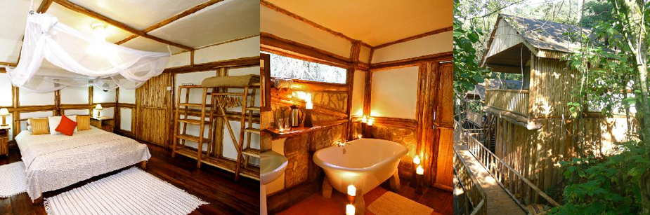 buhoma-safari-lodge-accommodation-in-bwindi-np