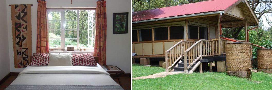nkuringo-gorilla-camp-accommodation-in-bwindi-uganda