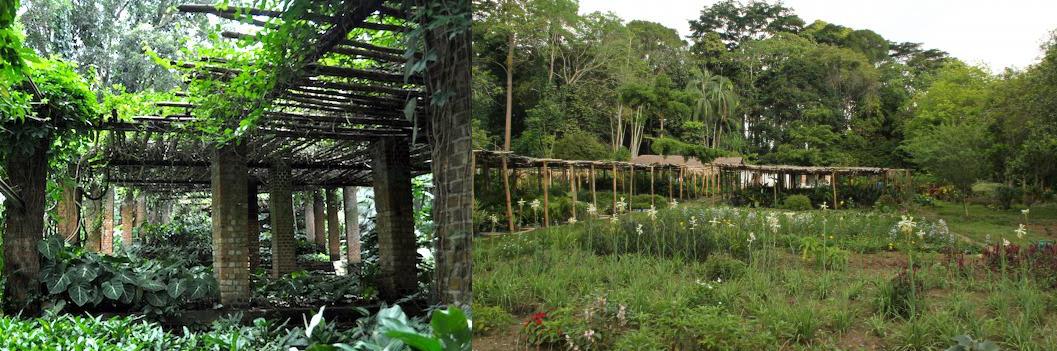 1 Day Congo Safari Tour