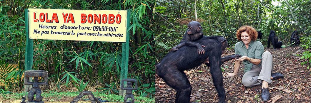 lola-ya-bonobo-sanctuary-tour