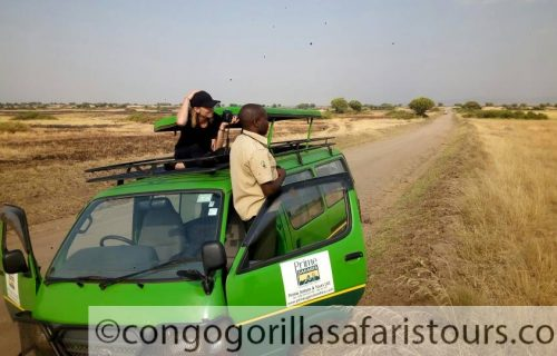 Wildlife Safaris in Uganda, Uganda Wildlife Safaris Tours