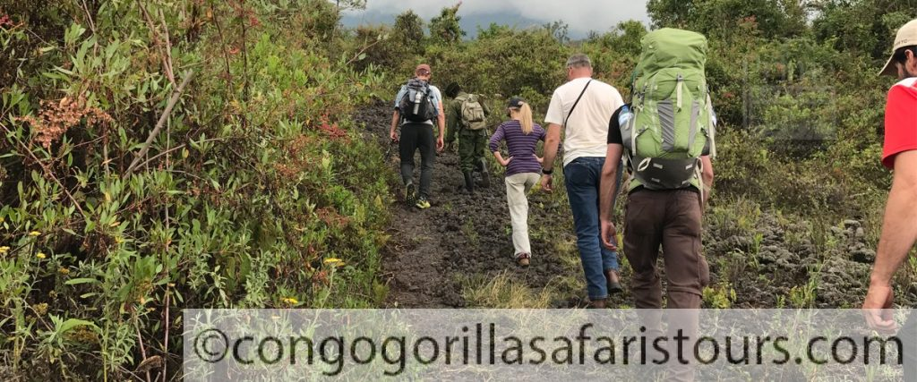 10 Days Uganda Mountain Hiking Safari