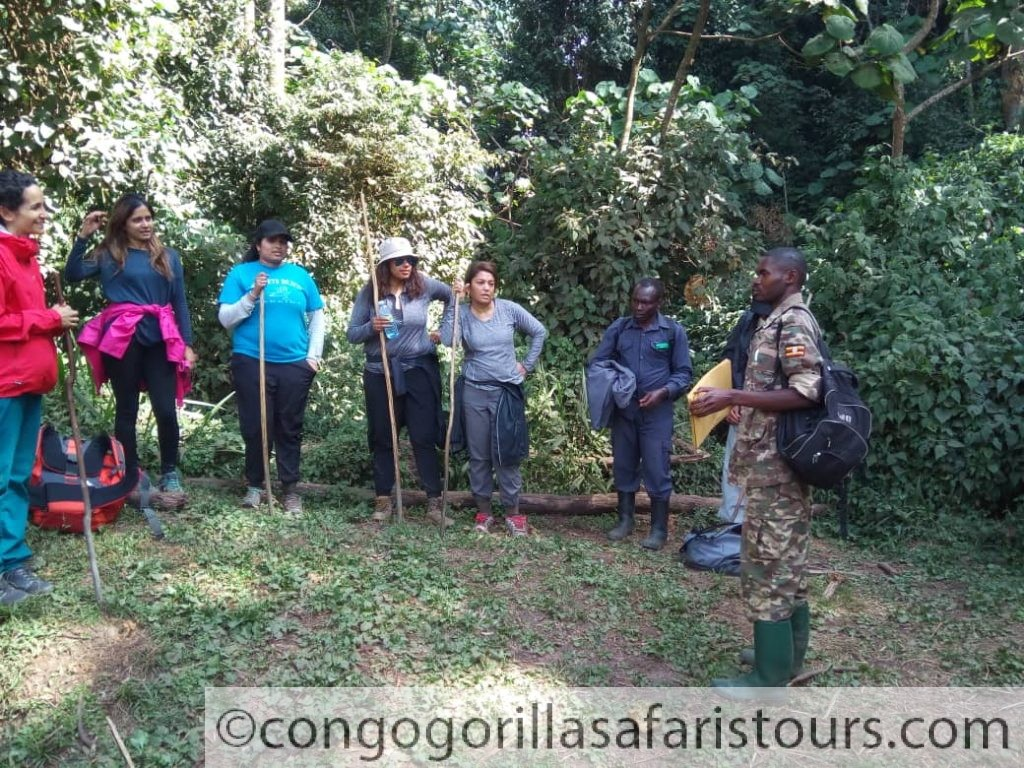 Setting off for gorilla trekking