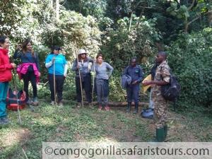 Setting off for gorilla trekking
