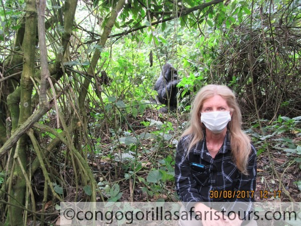 Best Time for Congo Gorilla Trekking Safaris - Congo Safari News
