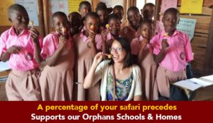 Orphange-prime-safari-1