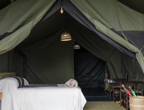 Bukima Tented Camp; A Dream Vacation Destination For Your Congo Safari